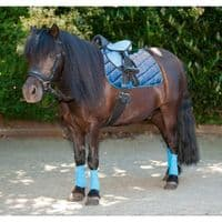 HKM Shetland Bridle in Black with Bit Browband